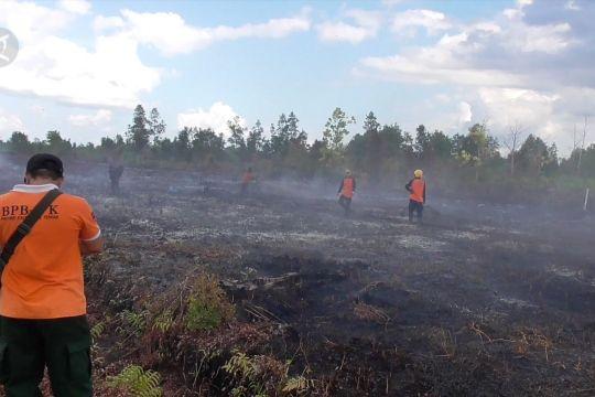 Perkuat pencegahan karhutla di Taman Nasional Sebangau