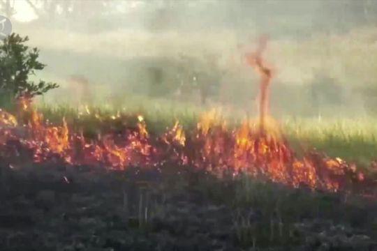 Hindari potensi kebakaran saat suhu udara tinggi