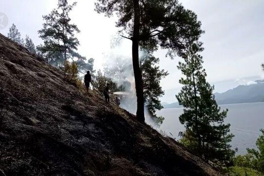 8 hektare hutan pinus Aceh Tengah terbakar