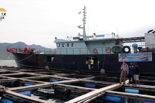Sumbar ekspor 20 ton kerapu ke Hong Kong