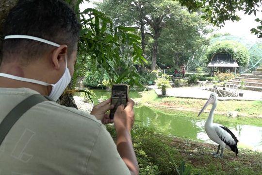 Menikmati wisata taman burung sembari mengedukasi anak