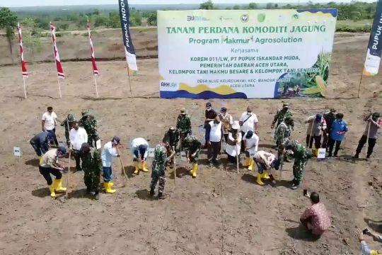 100 hektare lahan kosong Aceh Utara jadi ladang jagung produktif