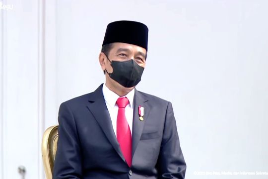 Presiden saksikan aksi penerbang TNI dan tinjau pameran alutsista