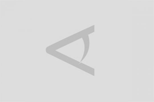Seekor ikan hiu paus terdampar di perairan Lebak