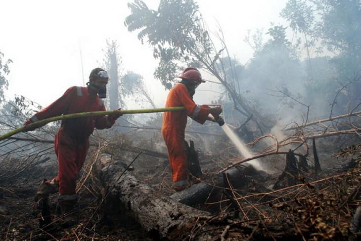 Satellites detect 154 hotspots on Sumatra island