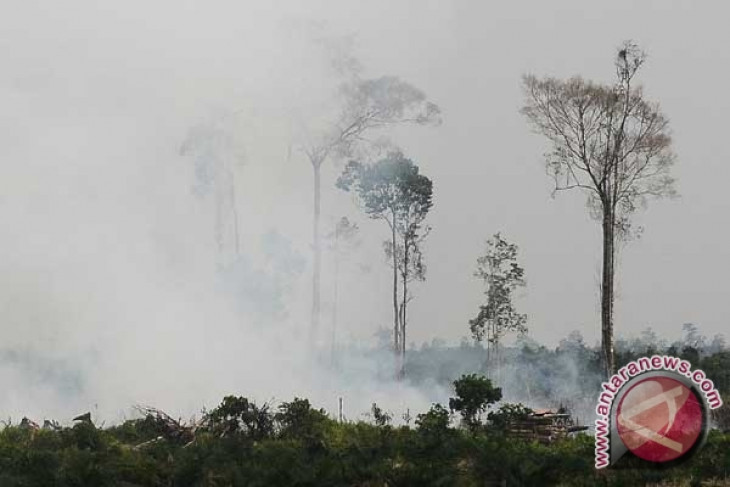 Number of hotspots in Riau double