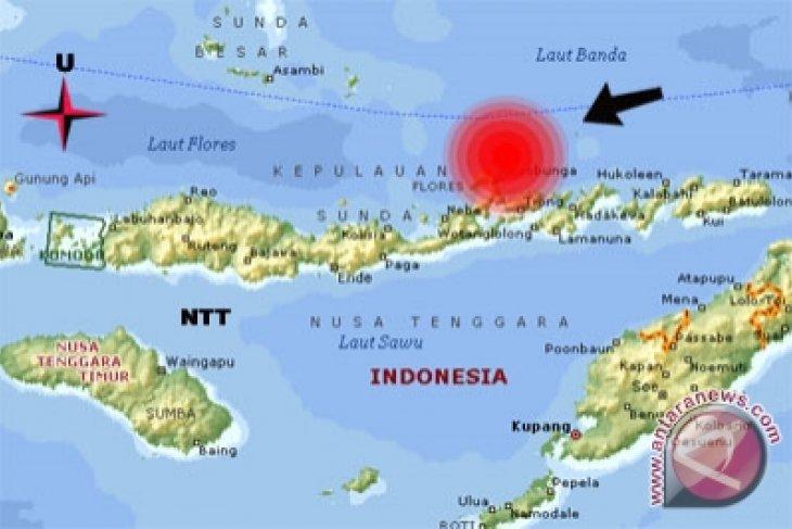 Gempa 6,2 SR guncang NTT