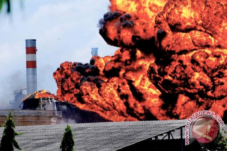 Kerusakan terumbu karang Laut Sawu karena ledakan Montara