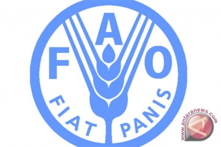 Indonesia may become high-income country: FAO