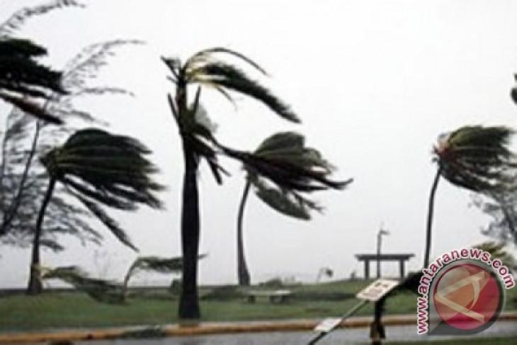 Angin kencang putus jaringan listrik di Pamekasan