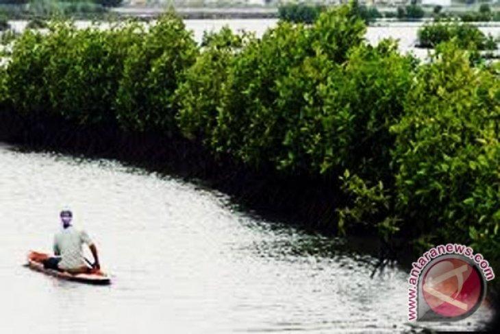 Lestarikan ekosistem mangrove TWA pantai panjang