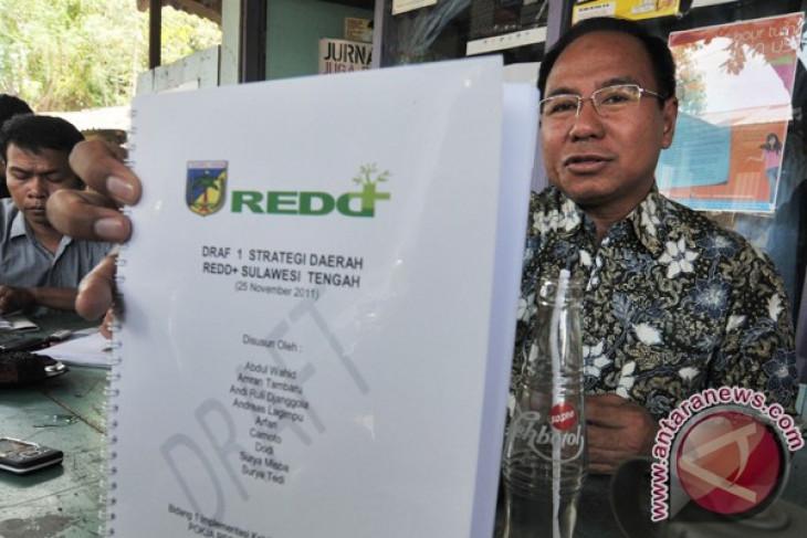 REDD+ working unit urges Indonesia govt to extend forest moratorium