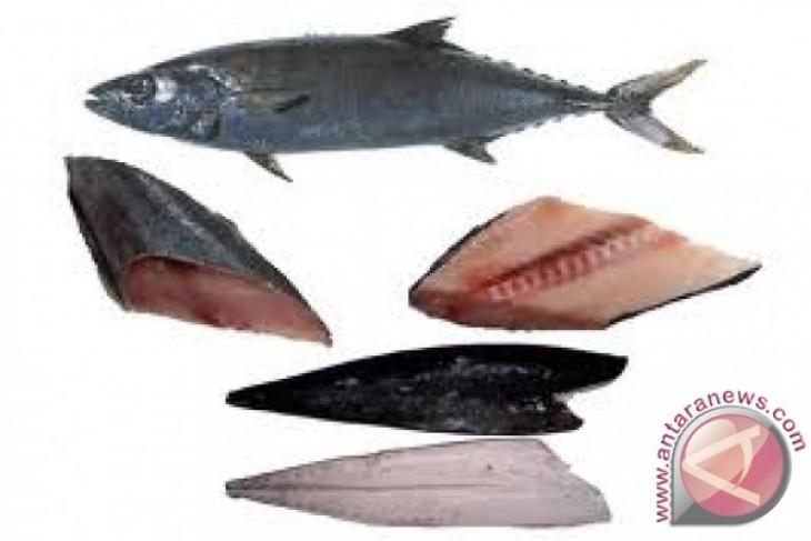 Fakta tentang minyak ikan