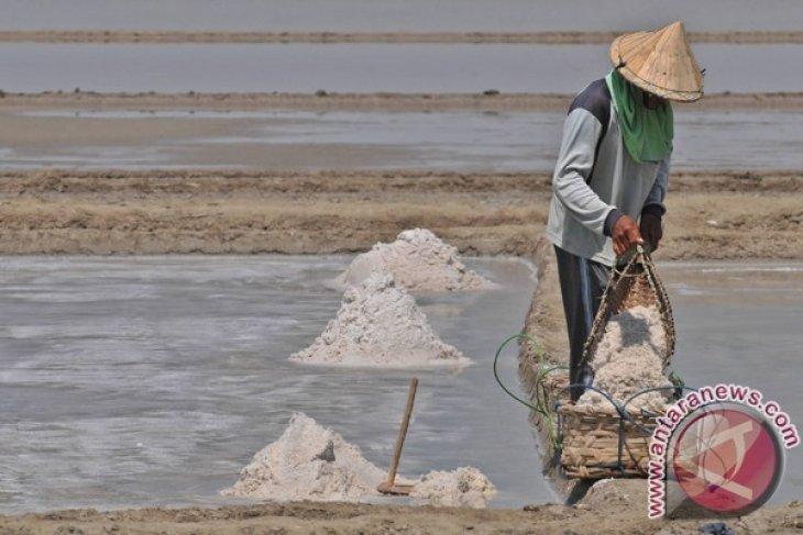 Produksi garam