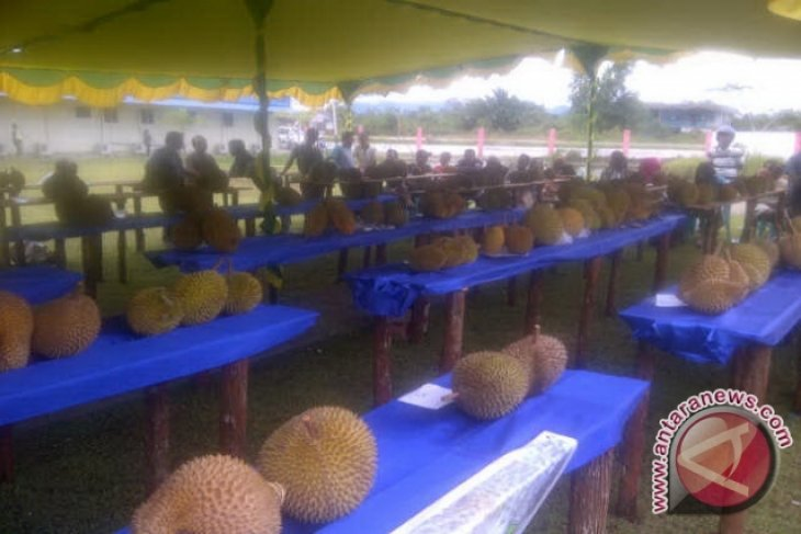 Mau ekspor durian, ini tiga varietas yang disarankan pakar