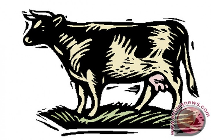 Selandia Baru janjikan sapi perah untuk Sumbar