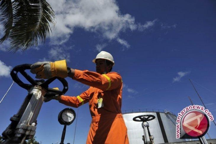 Harga minyak turun karena Saudi ragu batasi produksi