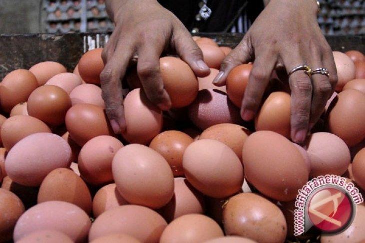 Telur Ayam Malaysia Banjiri Kalimantan Utara