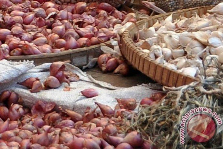 Harga turun, distributor bawang mengeluh