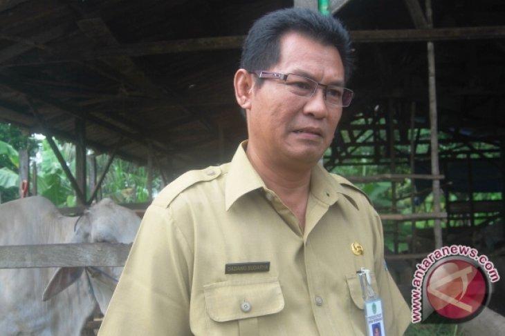 Dinas PKH Kaltim beri penghargaan kepada peternak berprestasi