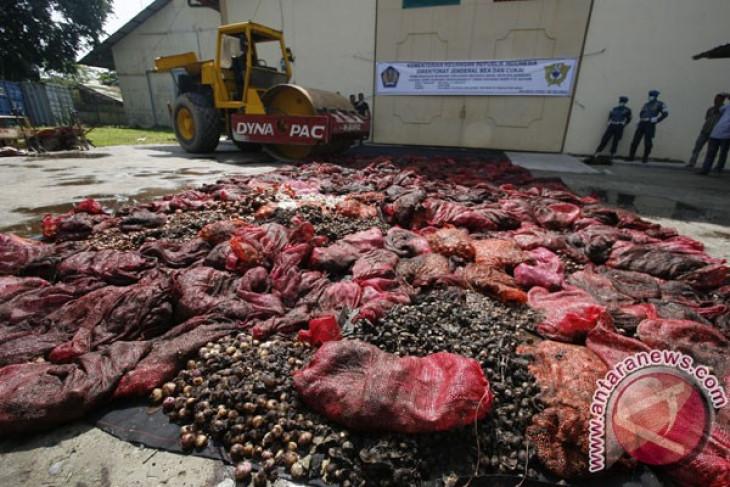 Kemendag selidiki delapan kontainer bawang impor ilegal