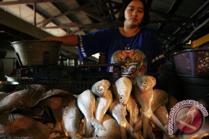 Sambut Imlek, pedagang bandeng bermunculan di Rawa Belong