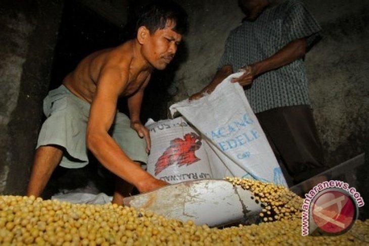 Harga Kedelai di Pontianak Rp9.000/kg