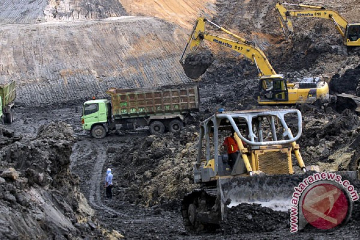Government to optimize use of coal in energy mix