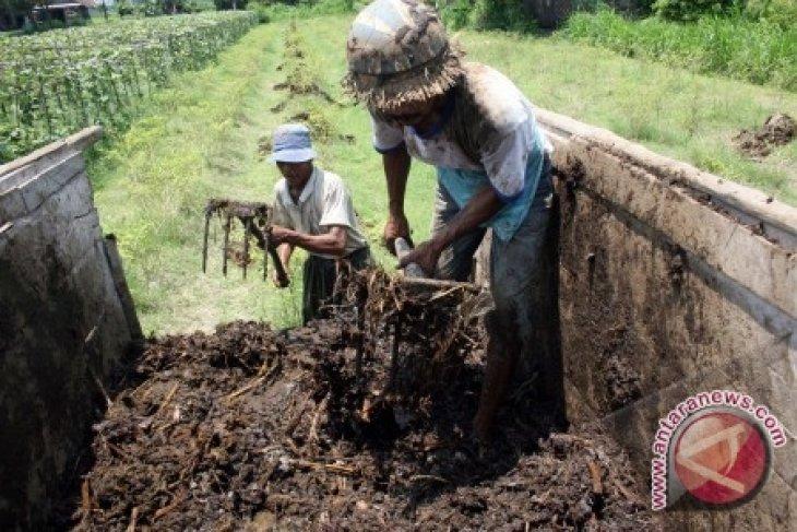 Wabup Minta Petani Tingkatkan Penggunaan Pupuk Organik