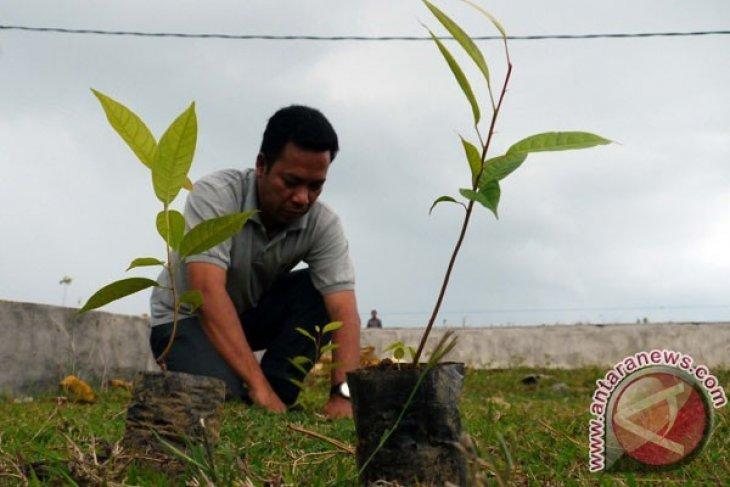 Pemkab Bogor Giatkan Penanaman Antisipasi Bencana Alam