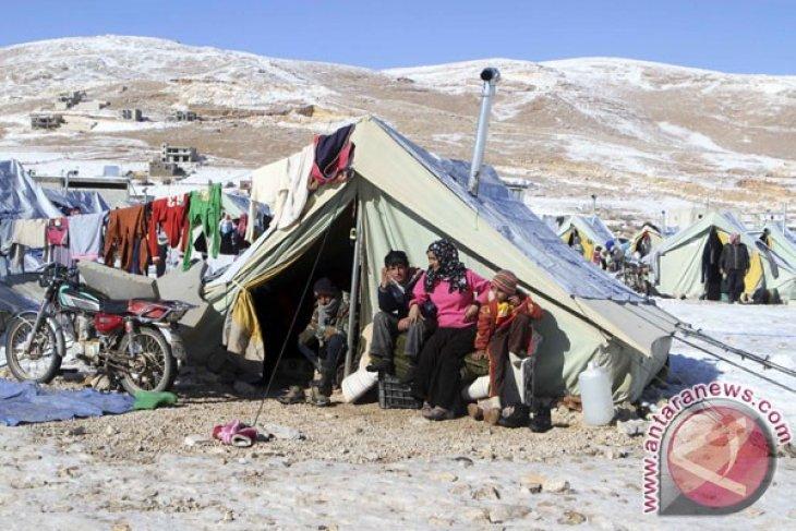 Pengungsi Suriah bakar diri di Kantor PBB Lebanon