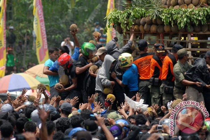 Ayo ke Festival Durian Lolong Pekalongan pada 31 Januari