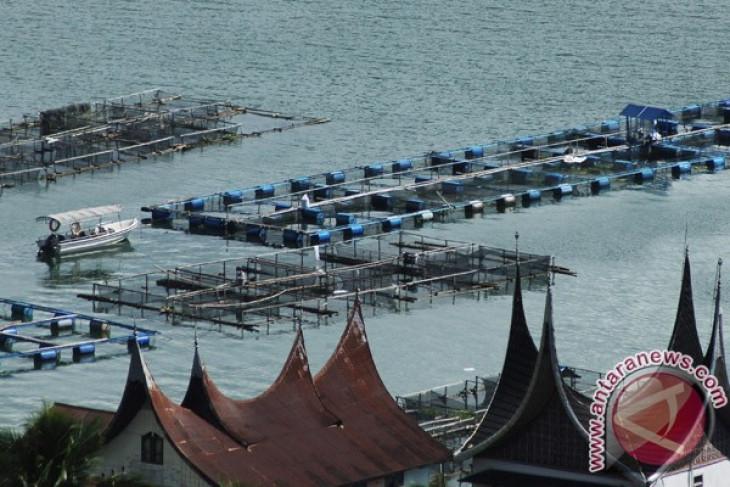 BBPBAT Sukabumi tebar satu juta ikan di Danau Maninjau