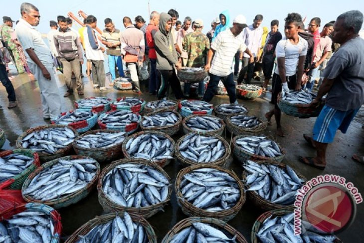 Indonesian ministry reinforces networks of fish meal producers