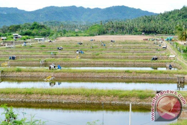 Iwan Fals Semangati Pembangunan Desa