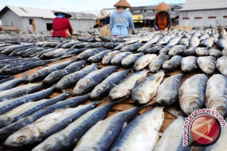 Bupati Dorong Generasi Muda Gemar Makan Ikan