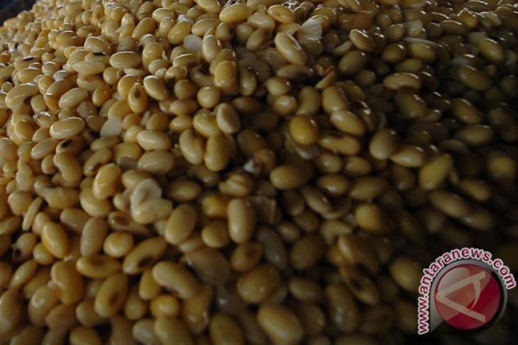 Cara cegah alergi kacang pada anak