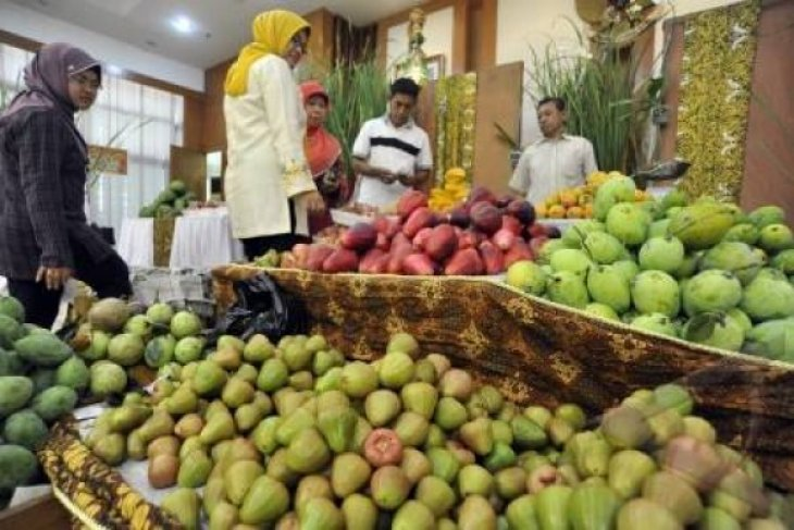 Hortikultura Perkecil Turunnya Nilai Tukar Petani Banten