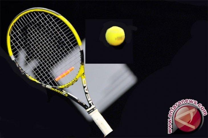 Petenis Ceko Strycova amankan semifinal Grand Slam pertamanya di Wimbledon