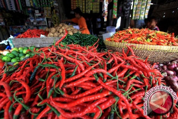 Harga cabai di pasar tradisional Toboali turun