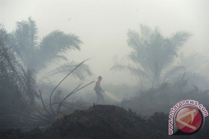 Walhi to assist haze victims in taking legal action