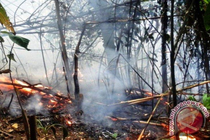 BPBD Ternate dorong peran masyarakat cegah kebakaran hutan