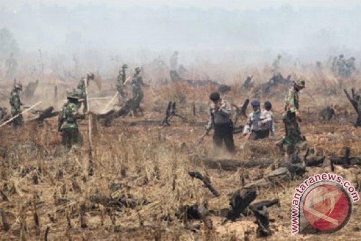 511 hektare lahan Banjarbaru terbakar dalam 9 bulan