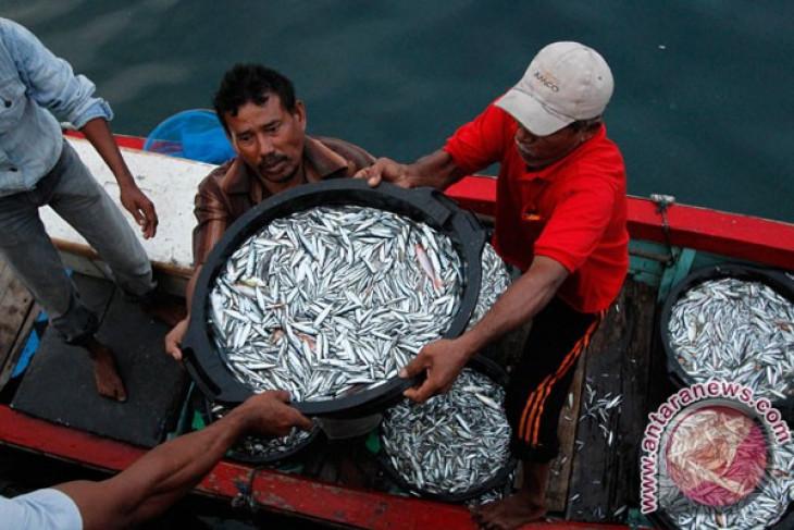 Indonesian fishermen not yet exploit EEZ