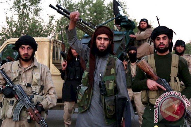 Riyadh Nyatakan Siap Kirim Tentara ke Suriah Perangi IS