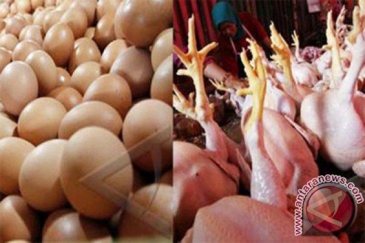Wah, Harga Makanan Pokok Dunia Naik Tujuh Persen