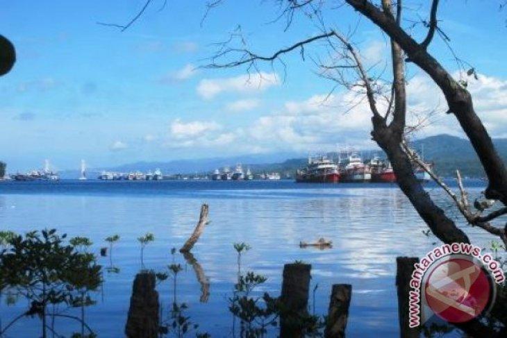 Warga pesisir Teluk Ambon diimbau tidak mengambil ikan