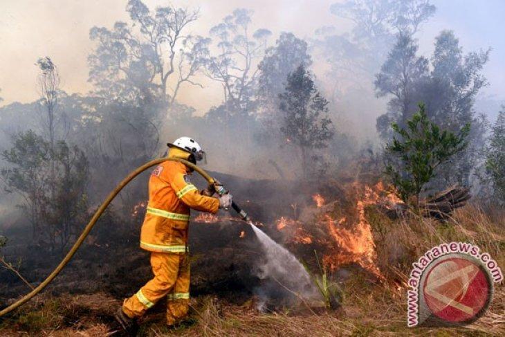 BMKG deteksi titik panas di Riau