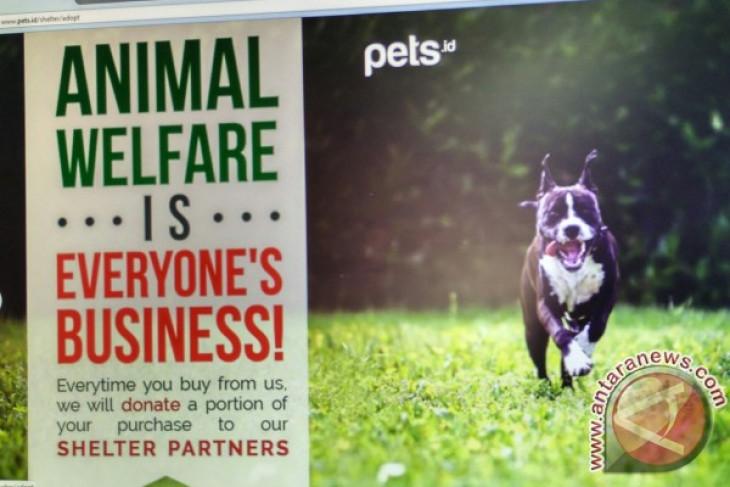 Memanjakan hewan peliharaan di Pets.id