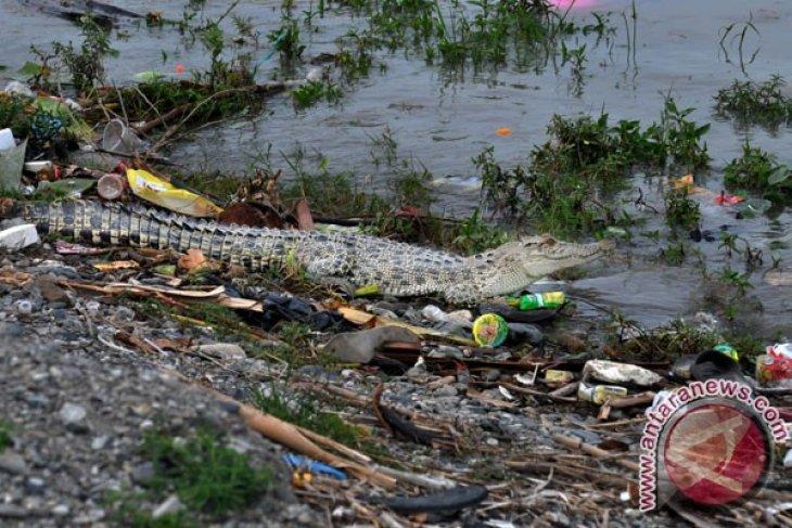 Pencemaran Sungai Di Indonesia
